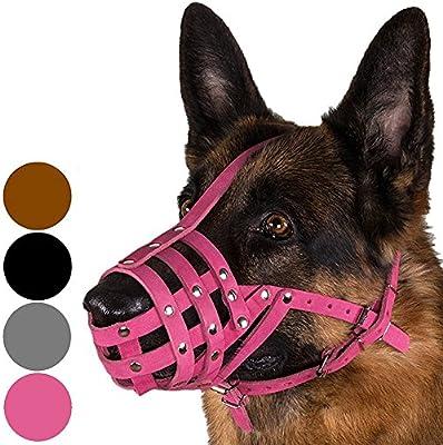 CollarDirect - Bozal de Piel para Perro, diseño de Pastor alemán ...