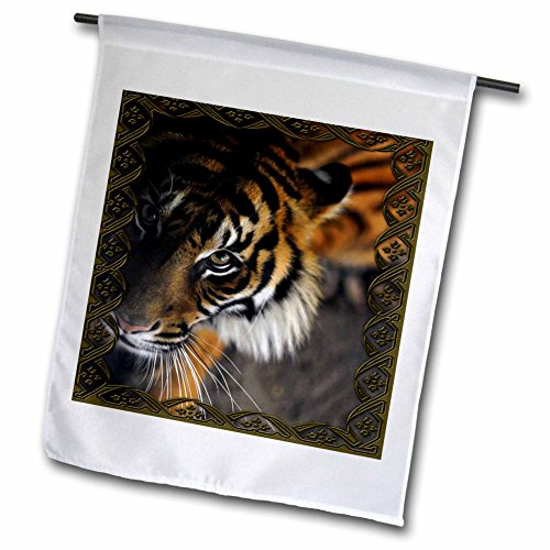 Bengal Beautiful Tiger - 3dRose fl_108066_1 Beautiful Bengal Tiger Print and Frame Garden Flag, 12 by 18-Inch