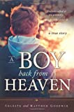 A Boy Back from Heaven, Celeste Goodwin and Matthew Goodwin, 1462113850