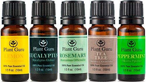 ★ дыхания Set ★ необходимый набор Нефть Разнообразие - 5 Pack - 100% Pure 10ml терапевтической степени чистоты. Установите включает- (Eucalyptus, розмарин, чайное дерево, мята, лимон)