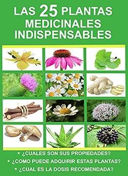 Las 25 plantas medicinales indispensables cuales son sus for Todas las plantas son ornamentales