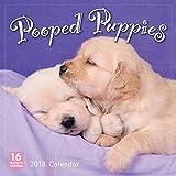 Pooped Puppies 2018 Wall Calendar (CA0151)