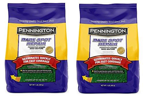 Pennington Bare Spot Repair Grass Seed Mix - 1 LB (.2-Pack)