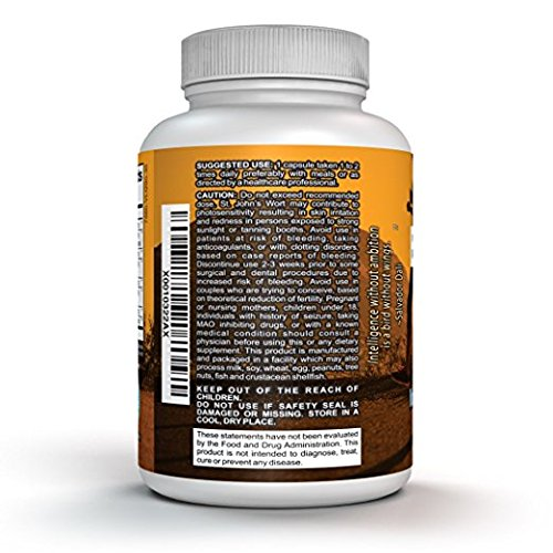 Natural Energy Brain Booster Supplement – Active Focus, Anxiety Relief, & Memory Support St. John's Wort, L Glutamine, Ginkgo Biloba, & More for Students, Adults, & Kids – Nootropic Smart Drug