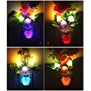 4PCs LED Night light Color Changing Mushroom & Flower Plug In Wall Lights, Auto On/off And Color Changing, Energy Saving Light Sensor, Mushroom And Flower Decorative Wall Lights