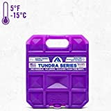 Long Lasting Ice Pack for Coolers, Camping, Fishing and More, Medium Reusable Ice Pack, Tundra Series by Arctic Ice