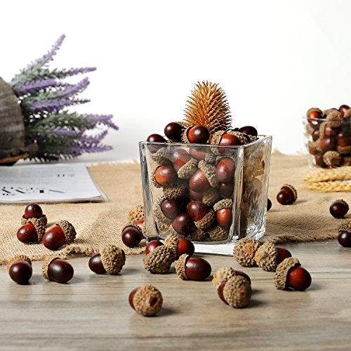 100 pieces Brown Assorted Artificial Acorn Caps, Autumn Vase Filler Decorations by MyGift
