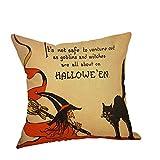 Pgojuni Flax Happy Halloween 45cmX45cm Pillow Cases Happy Fall Yall Linen Sofa Cushion Cover 1pc (45cm x 45cm) (F)