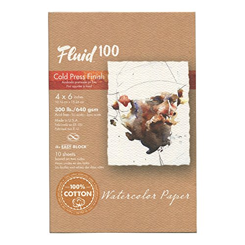 (Handbook Paper Fluid 100 Watercolor Cp 300Lb Ez-Block 4X6)