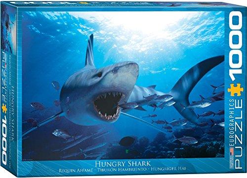 100 Shark - 5