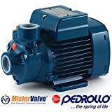 Pedrollo Electric Water Pump PKm peripheral impeller PKm 60 0.5 HP 115V Domestic use and in particular for distributing water in combination with small pressure tanks irrigation of gardens