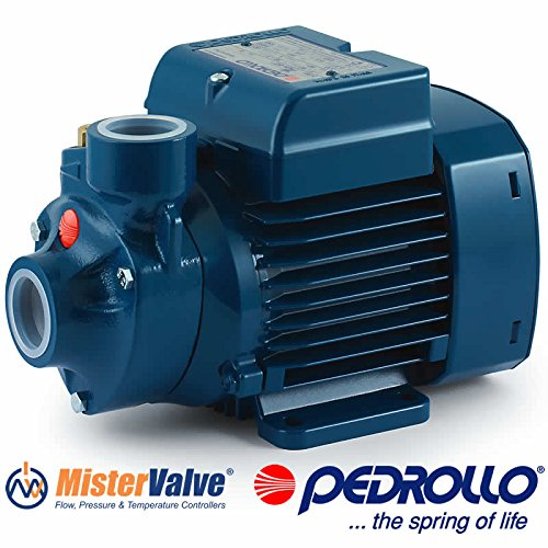 Pedrollo Electric Water Pump PKm peripheral impeller PKm 60 0.5 HP 115V Domestic use and in particular for distributing water in combination with small pressure tanks irrigation of gardens by Pedrollo