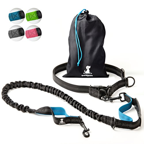 The 10 best waist harness dog leash for 2019