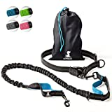 Hands-Free Dog Leash for Medium and Large Dogs – Professional Harness with Reflective Stitches for Training, Walking, Jogging and Running Your Pet (Blue)