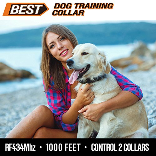 Best Rechargeable Waterproof Dog Training Collar Version 2.0 with Remote for All Sizes