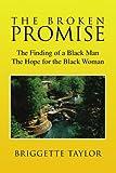 The BROKEN PROMISE, Briggette Taylor, 1425799922