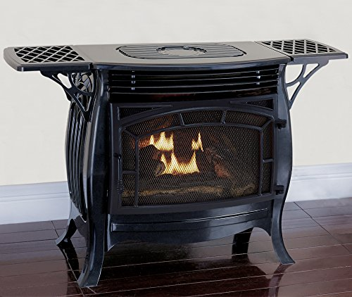 Duluth Forge Dual Fuel Vent Free Model FDSR25-GF, Gloss Finish, Remote Control Gas Stove Black