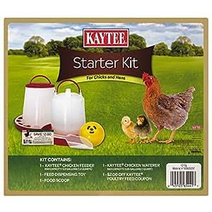 Kaytee Chicken/Chick Starter Kit