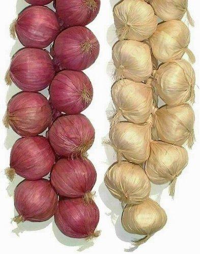 l/égumes L-Zone 5,1/x 50,8/cm oignon et ail artificielle cordes