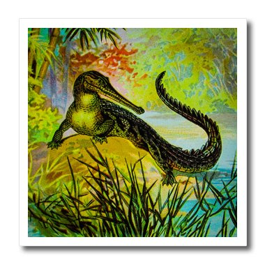 scenes-from-the-past-magic-lantern-vintage-magic-lantern-caimen-crocodile-alligator-reptile-nature-w