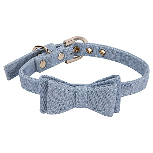 pet accesories dog - 2