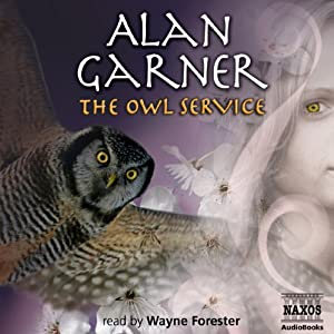 The Owl Service Hörbuch