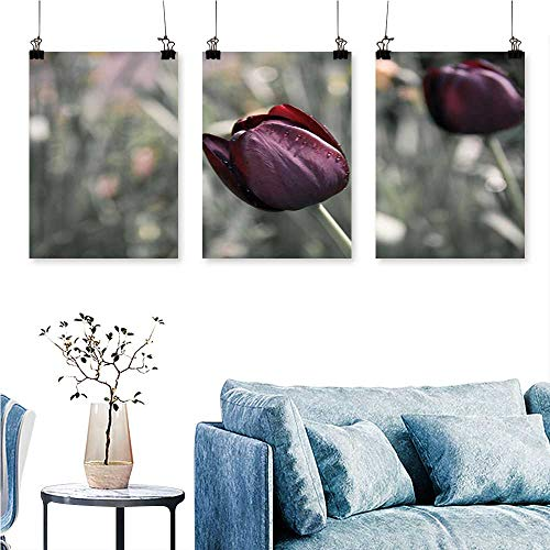 (SCOCICI1588 3-Piece Home Decoration Beautiful Purple Tulip to Hang for Living Room No Frame 24 INCH X 35 INCH X 3PCS)