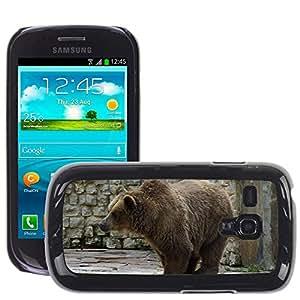 Etui Housse Coque de Protection Cover Rigide pour // M00111410 Oso de Brown Oso Grizzly Grizzly Bear // Samsung Galaxy S3 MINI i8190