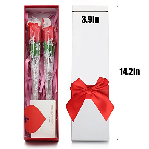 noverty-2-attractive-t-back-mystic-roses-g-string-inside-rose-with-gift-box-for-anniversary-valentin