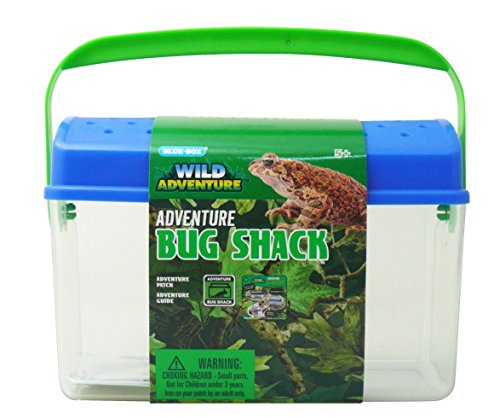 Wild Adventure Bug Shack Set
