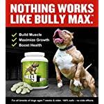 Bully Max Muscle Supplements for Dogs - Protein for Dogs to Build Muscle, Mass, Dog Weight Gain Supplement for Your Pitbull Puppy & Adult Dog - Dog Supplement for American Bully 9