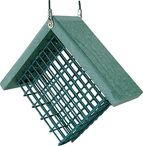 Suet Bird Feeder - Audubon Going Green Suet Feeder Model  NAGGSUET