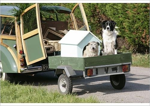 A1 Poster of JD-20102-M Dogs - in dog house on trailer behind Morris Minor Traveller 1969 (3740742)
