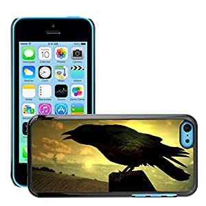 Hot Style Cell Phone PC Hard Case Cover // M00046463 animals raven birds // Apple iPhone 5C