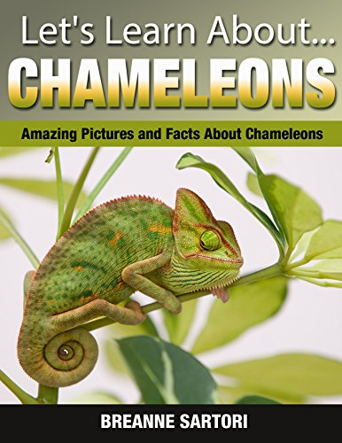 Chameleons: Amazing Pictures and Facts About Chameleons (Let's Learn About) by [Sartori, Breanne]