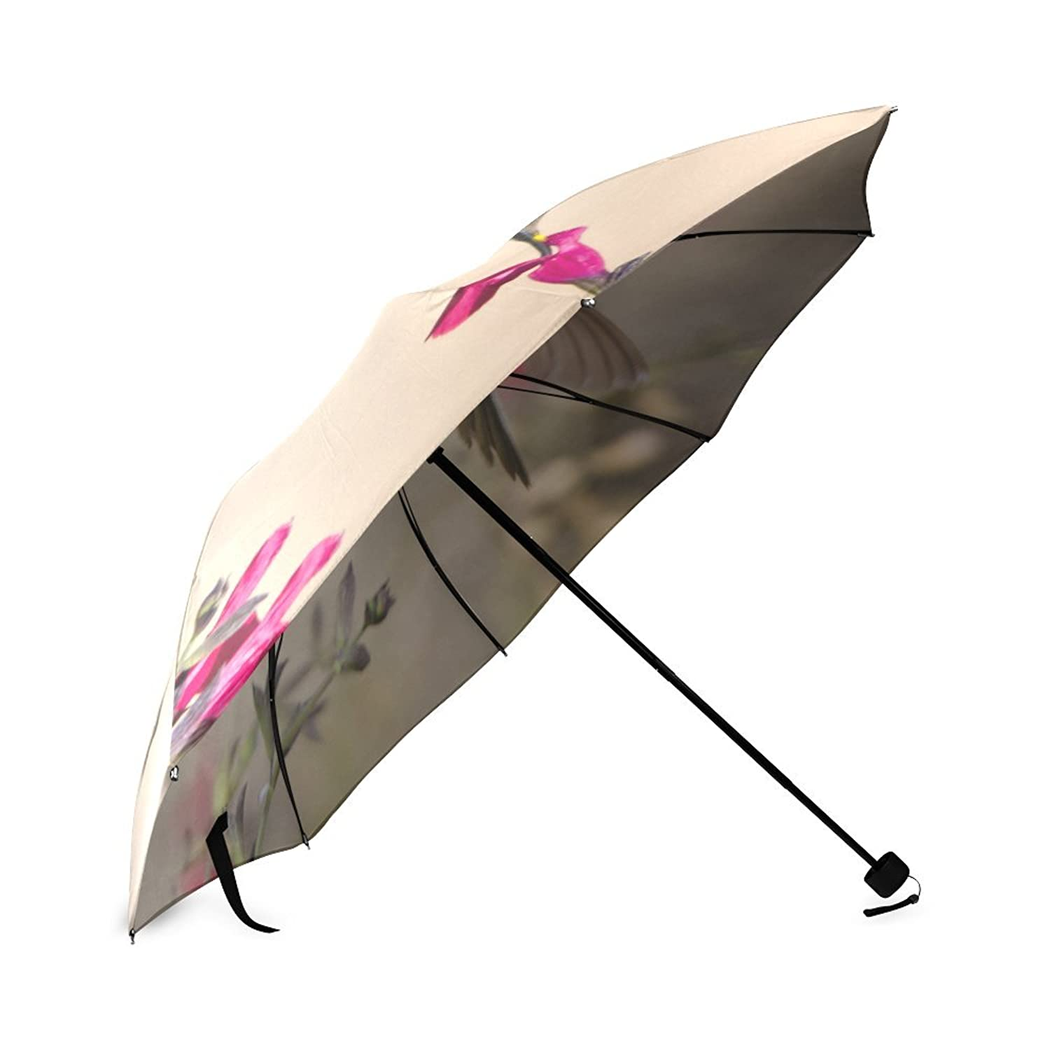 Amazon.com: Cute and Beautiful Hummingbird, Animal Pattern Folding Rain Umbrella/Parasol/Sun Umbrella: Clothing
