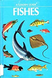 Fishes: A guide to fresh and salt-water species (A Golden guide)