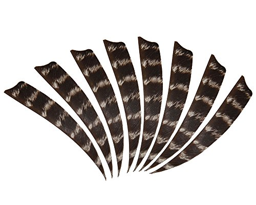 (36pcs 4inch Wildfires Turkey Feather Fletching Archery Hunting Arrows Right Wing Feathers)
