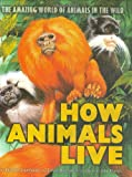 img - for How Animals Live: Amazing World of Animals in the Wild, The book / textbook / text book