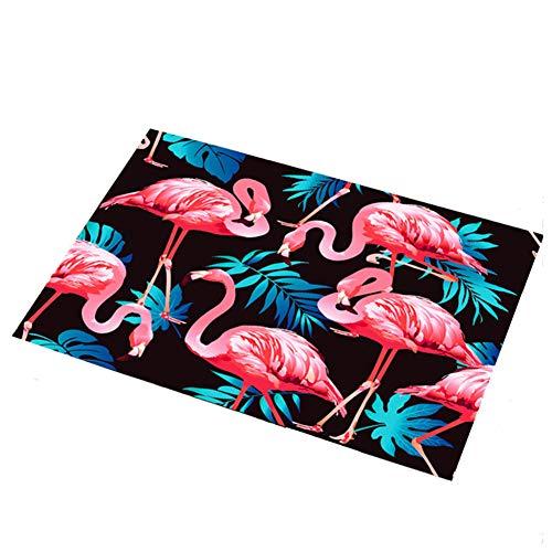 Eanpet Front Door Mat Outdoor Flamingo Rug 2x3 Modern Area Rug Rubber Pretty Mat Non Slip Indoor Outdoor Doormat Waterproof Shoes Scraper Entryway Rug Home Decor Exterior Welcome Mat Black1