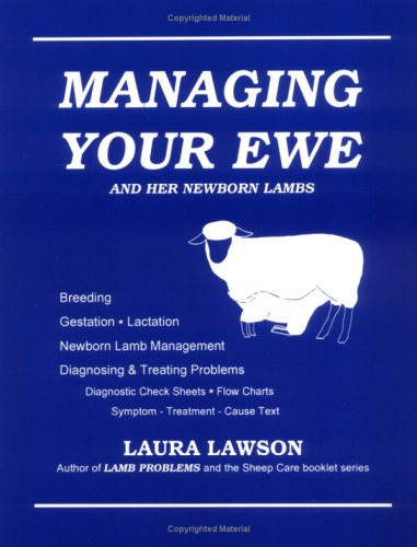 Managing Your Ewe and Her Newborn Lambs