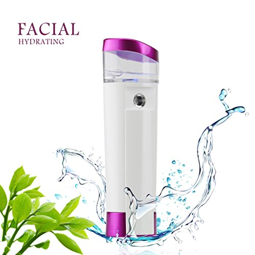 Idefair(TM) 5 in 1 Handy Nano Facial Steamers Portable Moisturizing Sprayer Cool Mist Eyelash Extensions Beauty Instrument with USB Rechargeable 2600Mah Power Bank flashlight (Purple)