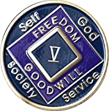5 Year Blue and Purple NA Medallion Official Narcotics Anonymous Chip