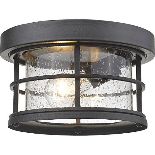 Z-Lite 555F-BK 1 Light Outdoor, Black