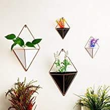 Candyqueen 1Pcs Hanging Planter Geometric Wall Decor Container Wall Vases Creative Bracket Home Decor (White, S)
