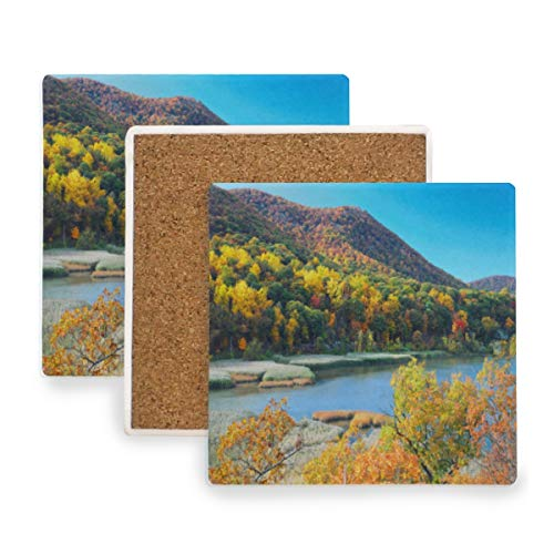 Autumn Mountain With Lake View And Colorful Foliage Forest Coasters,Protect Your Furniture from Stains,Coffee,Drink Coasters Funny Housewarming Gift,Square Cup Mat Pad for Home,Kitchen or Bar Set of 2 -