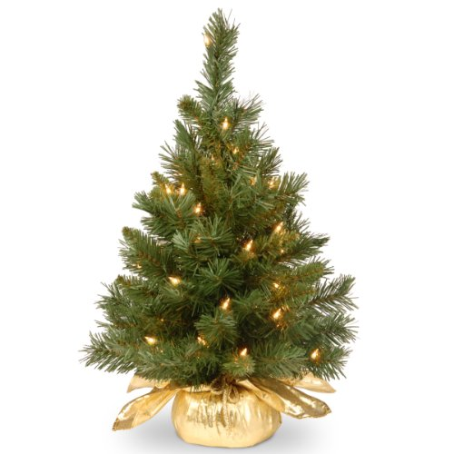 National Tree 24 Inch Majestic Fir Tree with 35 Clear Lights in Gold Cloth Bag (MJ3-24GDLO-1) - Glittered Poinsettia Wreath