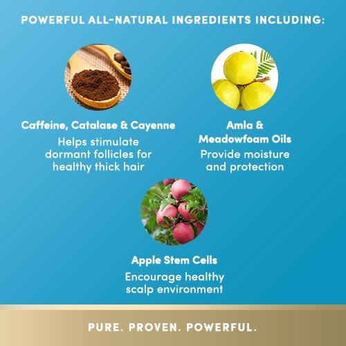 PURA DOR Hair Loss Prevention Therapy Conditioner Increased Moisture Post Shampoo Organic Argan Oil Biotin 16 Fluid Ounce