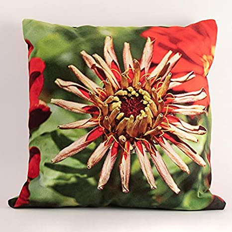 Sandrine Marbach - Cojín (40 x 40 cm), diseño de Flores ...