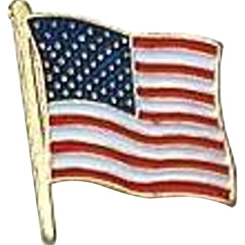 - US Flag Store USA Flag Lapel Pin Standard Flag Series 3 with Longer Pole